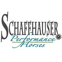 1 Package of 4 Reining Lessons with Sam Schaffhauser.