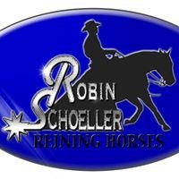 2 Days of Reining Lessons with Robin Schoeller
