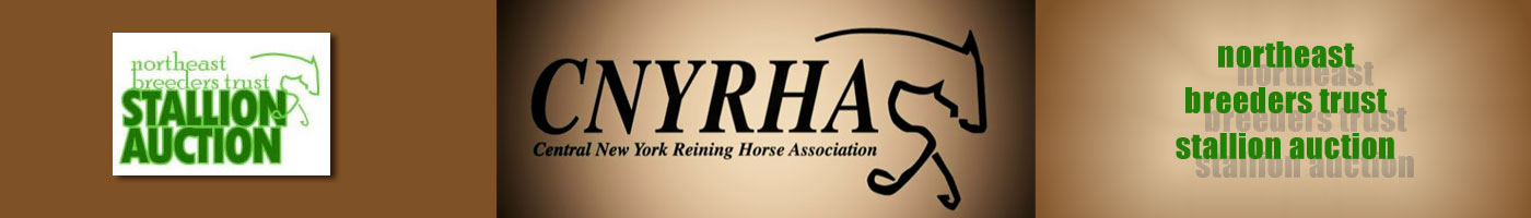 Central New York Reining Horse Association